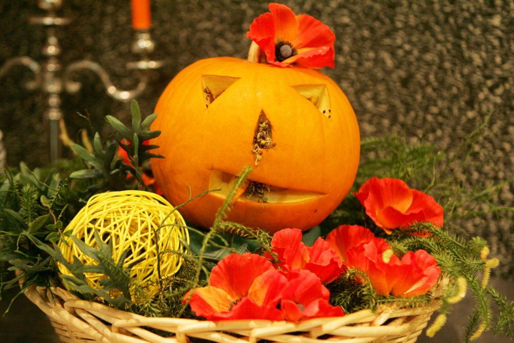 Ziedu kompozīcija ar ķirbi pirms Visu svēto dienas jeb Helovīna svētkiem.