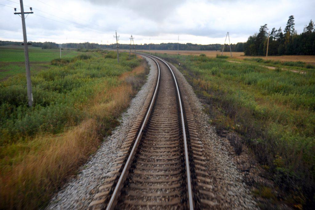 dzelzcels_LETA