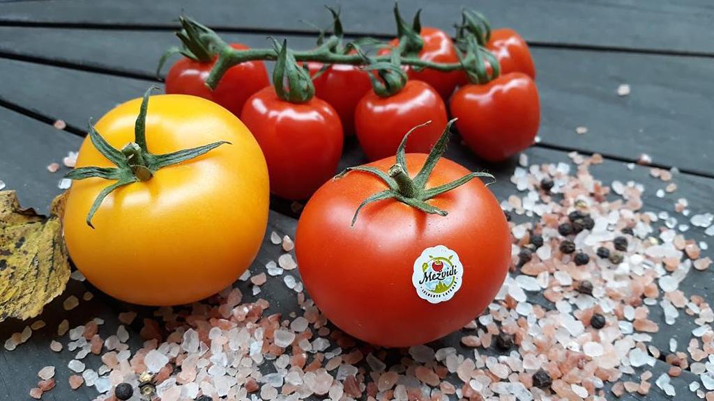 mezvidu-tomati-skonto-plus